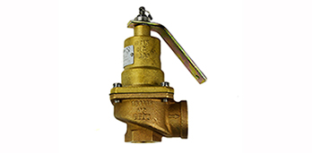 Safety/Relief Valves